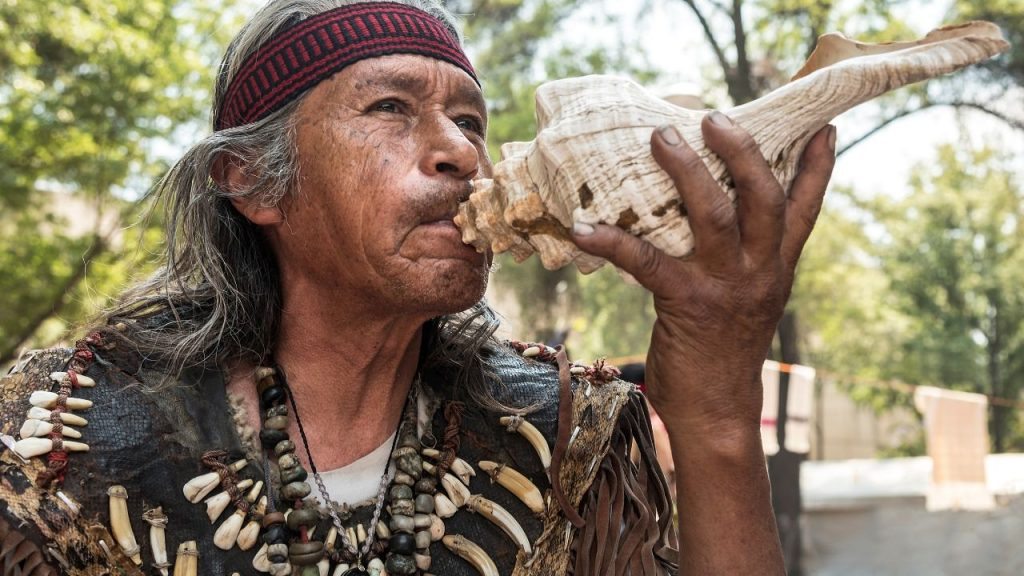 what are the signs of shamanic calling