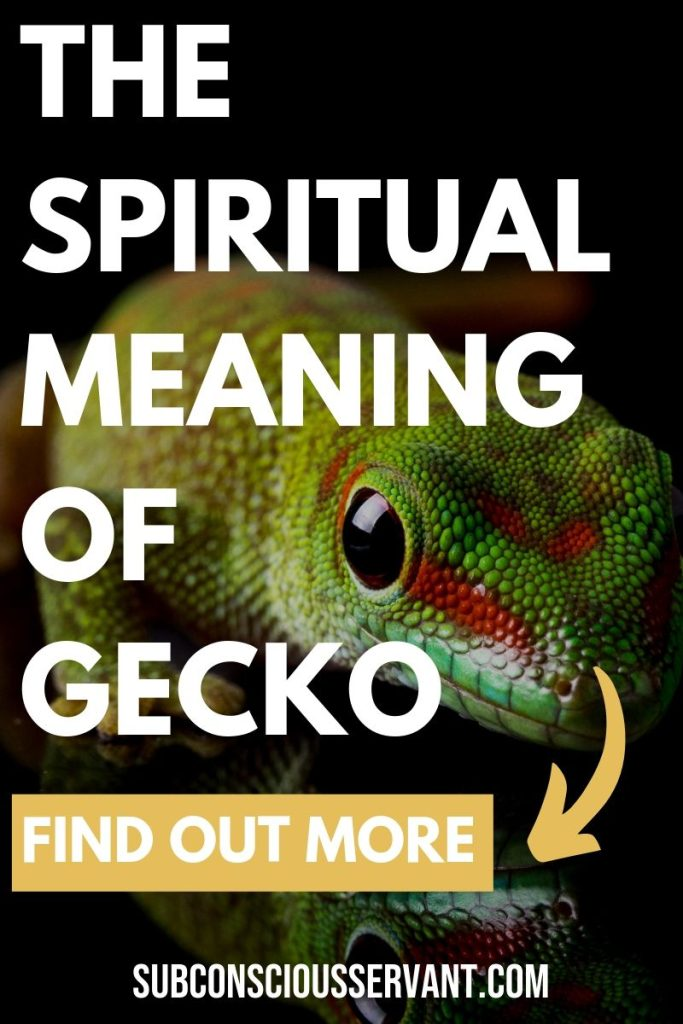 Gecko Spiritual Meaning