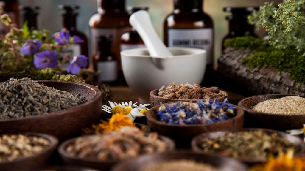 herbs for shamans