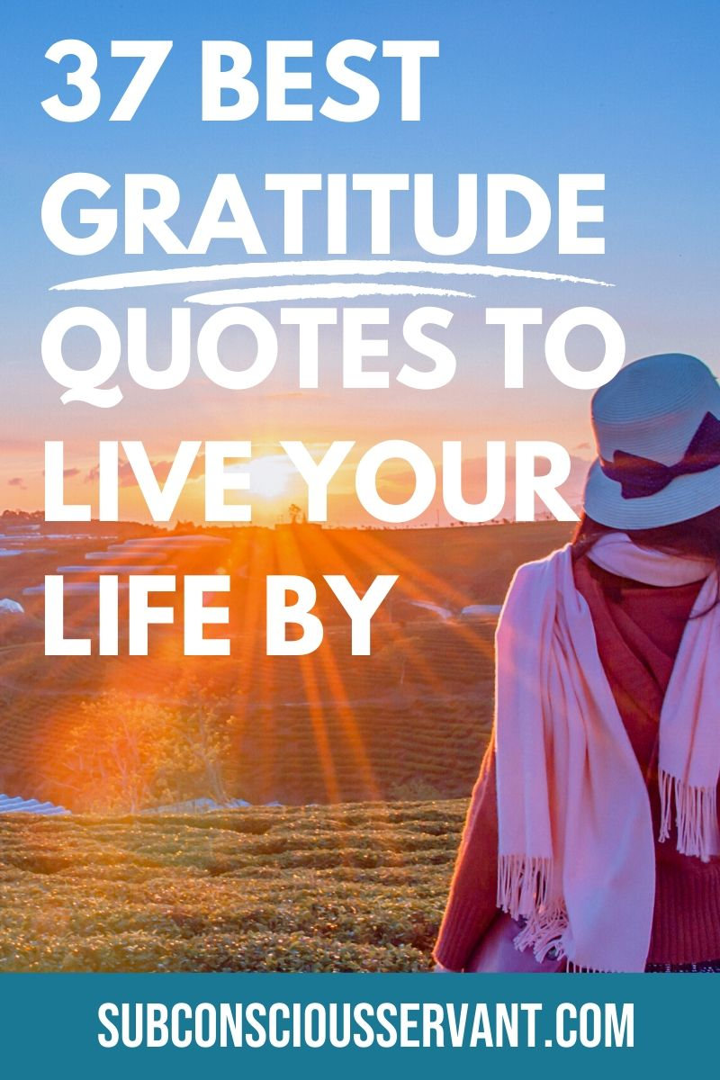 If you need to feel more gratitude then these are 37 of some of the gratitude quotes to make you feel good and of course full of deep gratitude. #Gratitude #Quotes #Abundence #LawOfAttraction #Manifesting