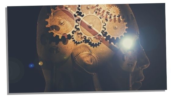 cogs in mind