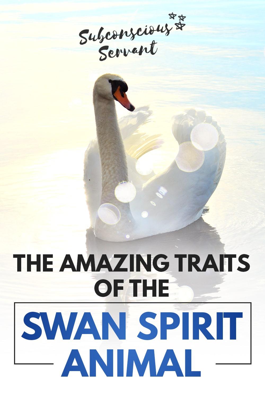 Amazing Secrets Of The Swan Spirit Animal Revealed
