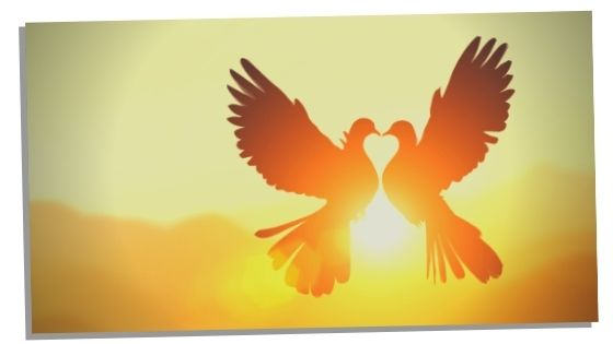 twin flame angel number 505