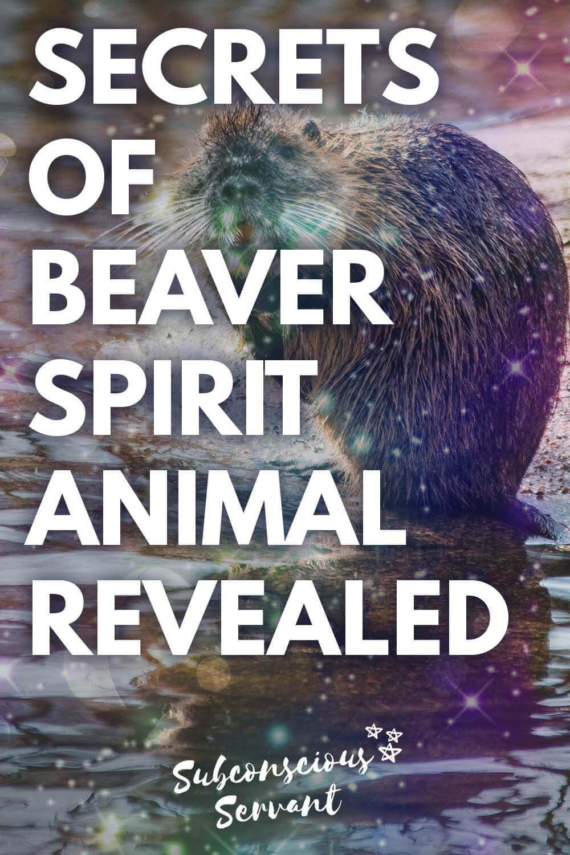 Beaver Spirit Animal Secrets Revealed - Is This Your Spirit Animal?
