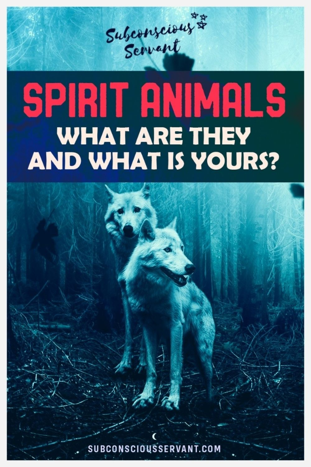 Spirit Animals - What Are They, And What Is Yours? [In Depth Guide]