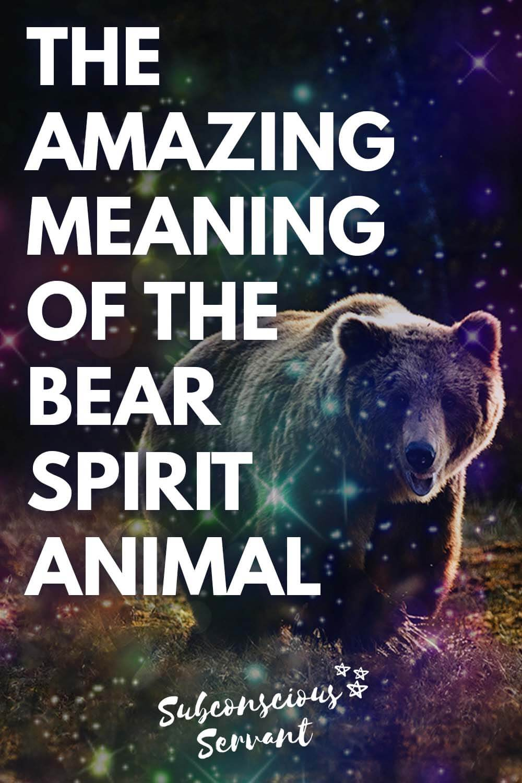 Bear Spirit Animal Meaning - Totem, Symbolism And More