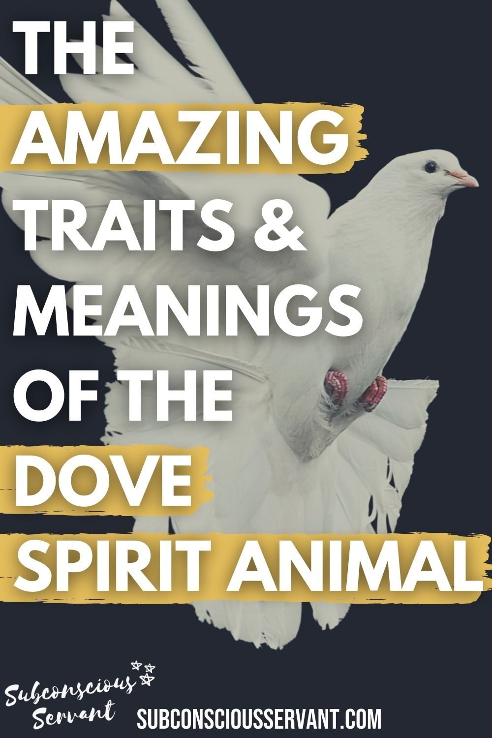 Is The Dove Your Spirit Animal? Amazing Meanings, Dreams, & Omens
