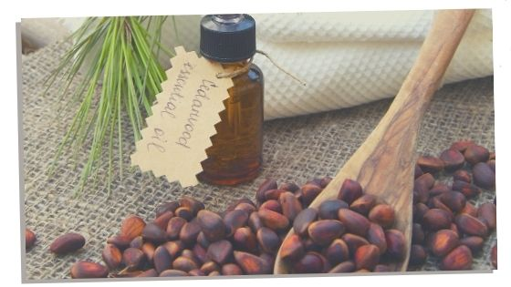 Essential oil for grounding Cedarwood
