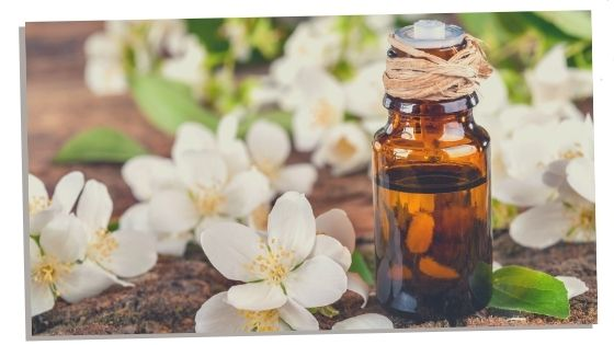Jasmine essential - heart chakra essential oil
