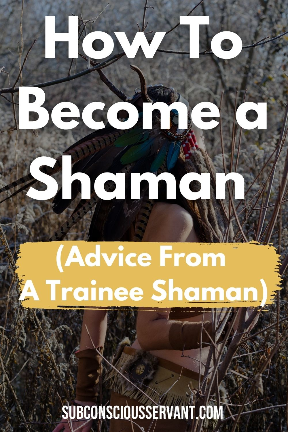 How To Become a Shaman (Advice From A Trainee Shaman)