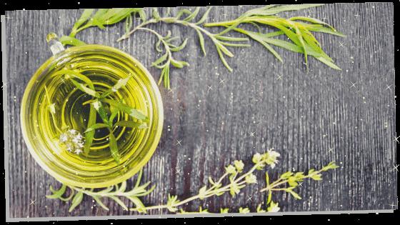 Spiritual herb Rosemary