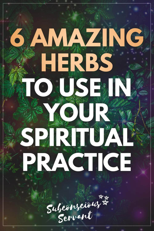Spiritual Herbs: 6 Amazing Herbs to Use in Your Spiritual Practice