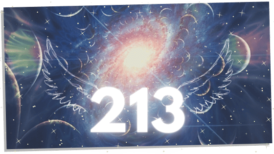 213 with angel wings