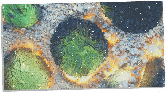 Pieces of Moldavite