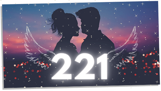 221 meaning for twin flames